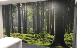 Wall Graphic Installations